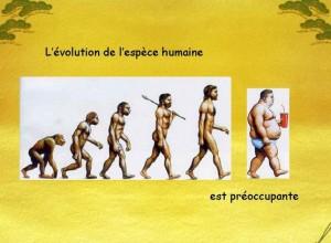 Humour - Evolution humaine