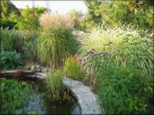 Peltier_jardin01
