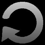 Toolbar - Replay